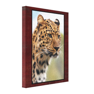 Leopard Head Shot Stretched Canvas Print