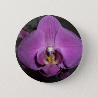 Leopard Head Yellow Purple Orchid 6 Cm Round Badge