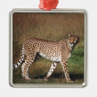 Leopard in plain christmas ornament