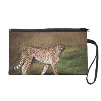 Leopard in plain wristlet clutches