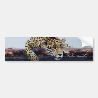 Leopard in the tree II Car Bumper Sticker