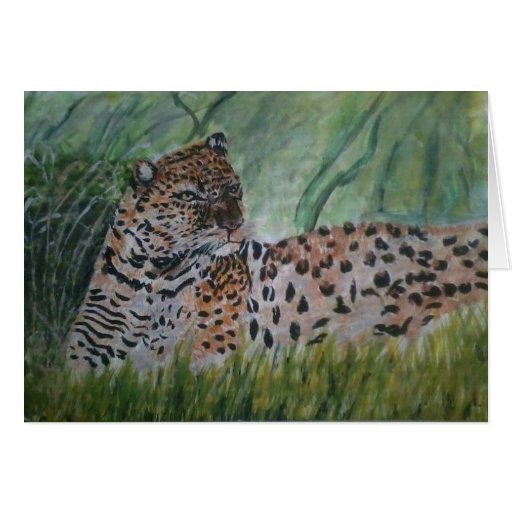 Leopard in the wild cards
