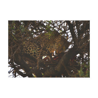 Leopard in tree with prey canvas print