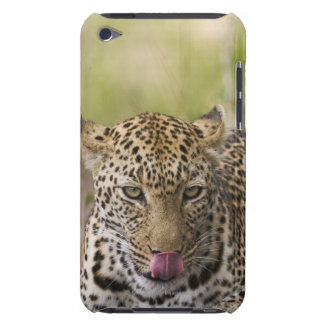 Leopard iPod Touch Covers