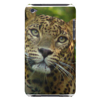 Leopard  iTouch Case iPod Case-Mate Case
