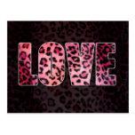 Leopard Love Postcard