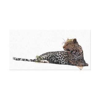 Leopard lying down canvas print