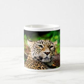 Leopard Coffee Mugs