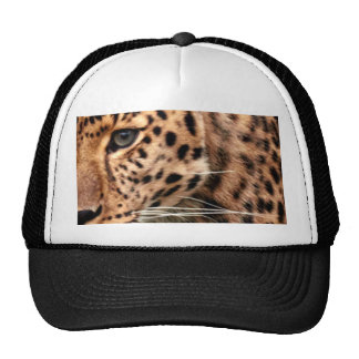 Leopard on the Prowl Cool Xmas Pattern Design Cap