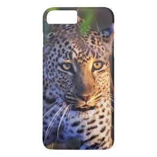 Leopard (Panthera Pardus) as seen in the Masai iPhone 8 Plus/7 Plus Case