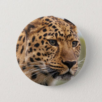 Leopard Photo 6 Cm Round Badge