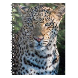 Leopard portrait, close up spiral notebook