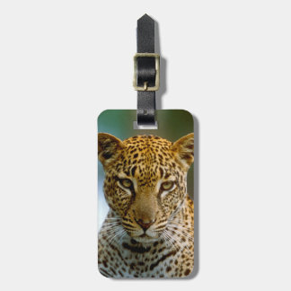 Leopard Portrait Luggage Tag