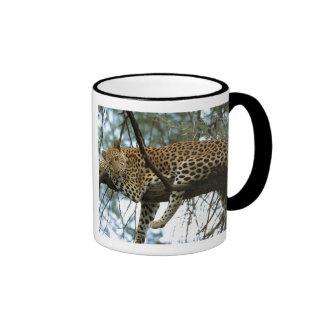 Leopard Resting in Tree Ringer Mug