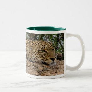 Leopard resting on rock Mug