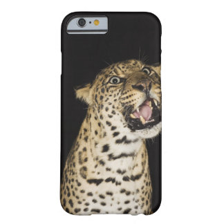 Leopard roaring barely there iPhone 6 case