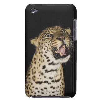 Leopard roaring iPod touch Case-Mate case