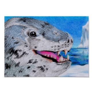 Leopard Seal Print