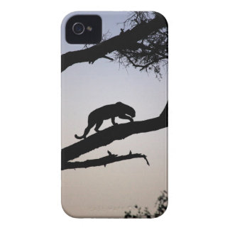 Leopard silhouette in a tree, Kenya iPhone 4 Case