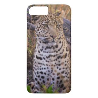 Leopard sitting, Botswana, Africa iPhone 8 Plus/7 Plus Case