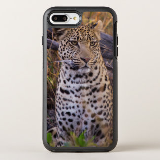 Leopard sitting, Botswana, Africa OtterBox Symmetry iPhone 7 Plus Case