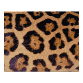 Leopard skin poster