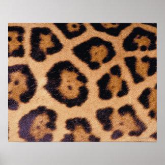 Leopard skin posters