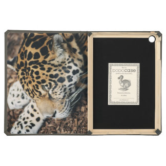 leopard sleeping iPad Air Dodo case iPad Air Cover