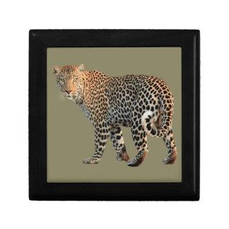 Leopard Small Square Gift Box