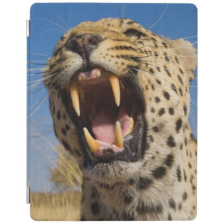 Leopard Snarling iPad Cover