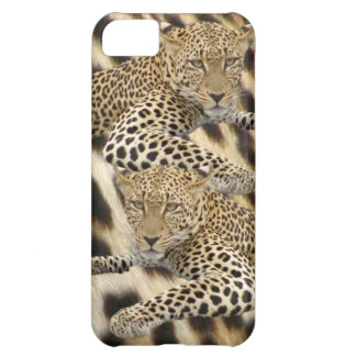 Leopard & Spots iPhone5 Case iPhone 5C Cover