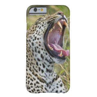 Leopard yawning, Greater Kruger National Park, 2 Barely There iPhone 6 Case