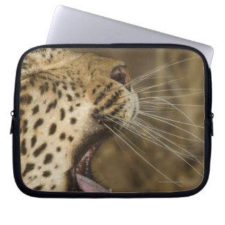 Leopard yawning, Greater Kruger National Park, Laptop Sleeve