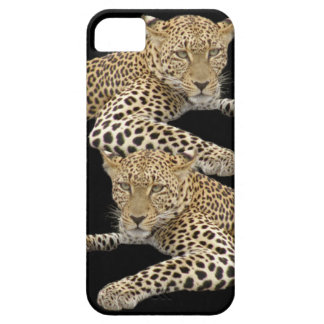 Leopards iPhone5 Case iPhone 5 Cases