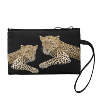 Leopards Key and or Coin Clutch 5 5x3 5 in Change Purse