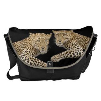 Leopards LARGE Messenger Bag