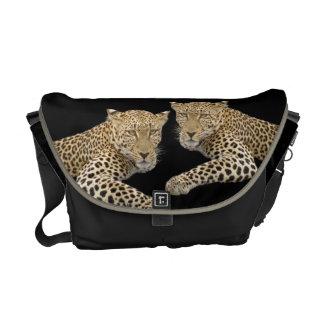 Leopards MEDIUM Messenger Bag