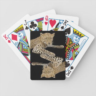 Leopards Playing Cards