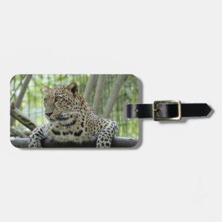 LeopardSundari_007 Luggage Tag