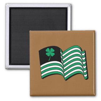 Leprechaun Flag / Irish Flag Refrigerator Magnets