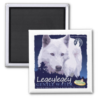 Leqeyleqey Magnet (1 of 6)