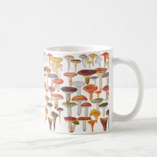 Les Champignons Mushrooms Basic White Mug