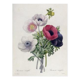 'Les Choix des Plus Belles Fleurs' Postcard