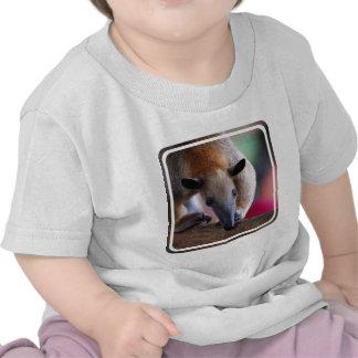 Lesser Anteater  Baby T-Shirt