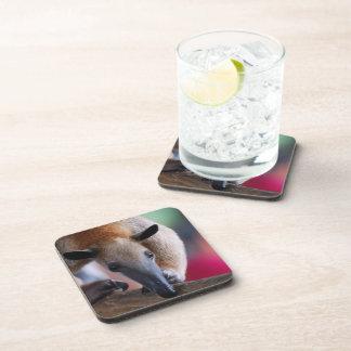 Lesser Anteater Cork Coasters