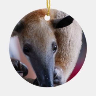Lesser Anteater Ornaments
