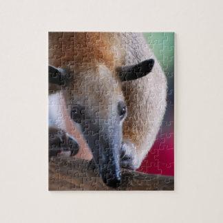 Lesser Anteater Puzzle