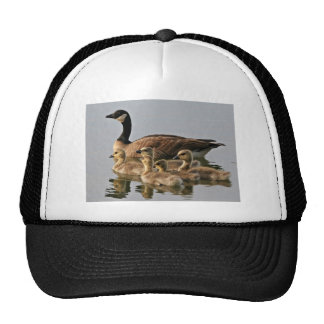 Lesser Canada Goose Brood Trucker Hat
