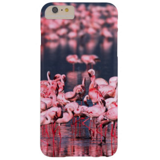 Lesser Flamingos (Phoeniconaias minor), Africa, Barely There iPhone 6 Plus Case