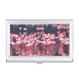 Lesser Flamingos (Phoeniconaias minor), Africa, Business Card Holder